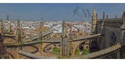 009-004 Sevilla
