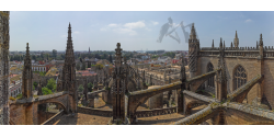 009-005 Seville