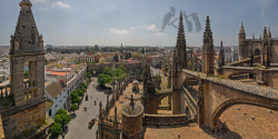009-010 Seville