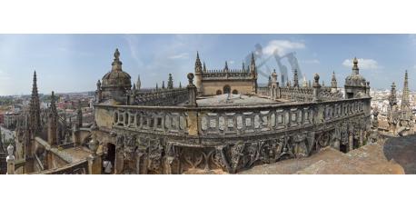 Cubiertas de la Catedral