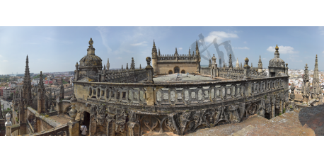 Cathedral Roofs