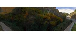 017-006 otoño