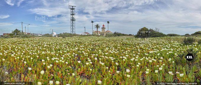 J74377F3. Ponta da Piedade Lighthouse. Lagos, Algarve (Portugal)