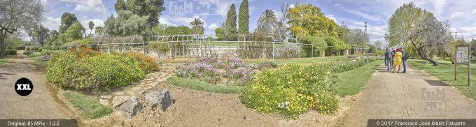 H5069105. El Arboreto del Carambolo. Sevilla. Spain