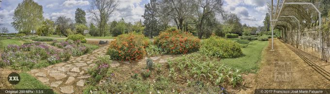 H5070056. El Arboreto de El Carambolo. Sevilla. Spain