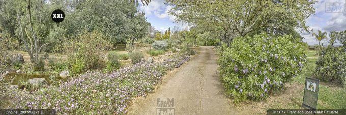 H5072904. El Arboreto del Carambolo. Sevilla. Spain