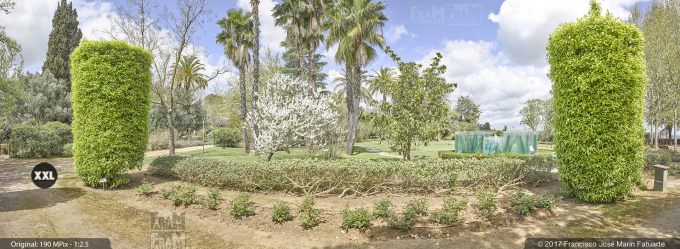 H5073404. El Arboreto del Carambolo. Sevilla. Spain