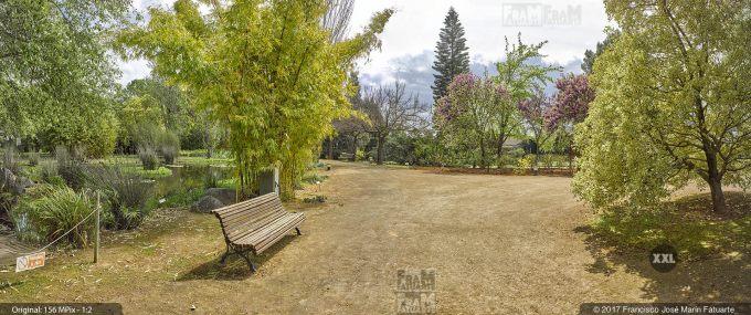 H5076253. El Arboreto del Carambolo. Sevilla. Spain