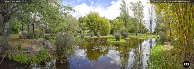 H5076504. El Arboreto del Carambolo. Sevilla. Spain