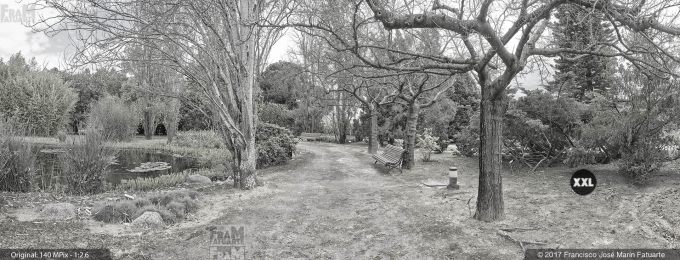 H5077394. El Arboreto del Carambolo. Sevilla. Spain