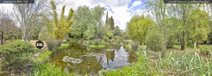 H5078654. El Arboreto del Carambolo. Sevilla. Spain