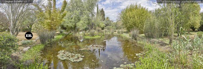 H50798F6. El Arboreto del Carambolo. Sevilla. Spain