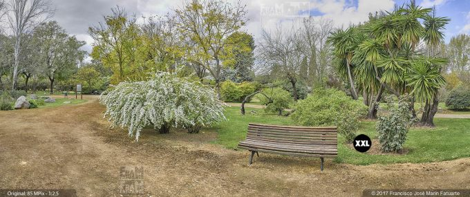 H5082604. El Arboreto del Carambolo. Sevilla. Spain