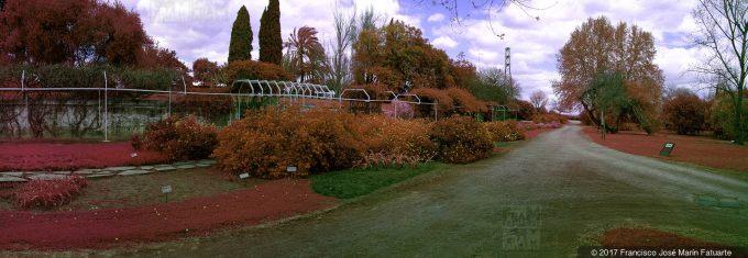 HS314904. Jardín Botánico El Arboreto. Castilleja de la Cuesta, Sevilla