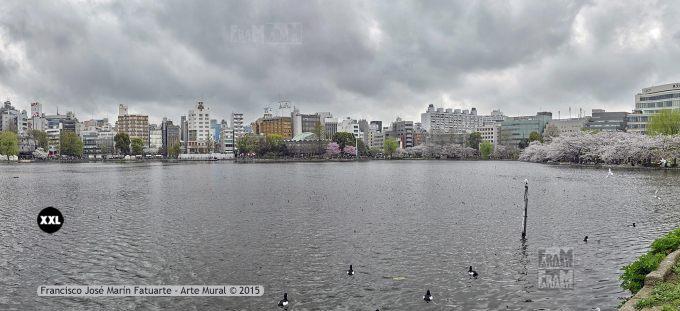 F2561054-2. Shinobazu Pond. Tokyo (Japón)