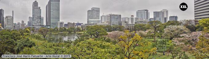 F2604204. Tokyo (Japón)