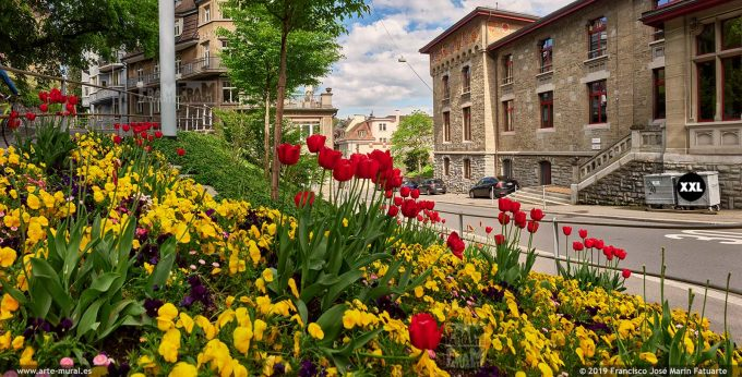 JF868203. Museggstrasse, Spring in Lucerne, Switzerland