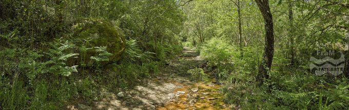 G3447404. Stream along path near Valdelarco - Huelva (Spain)