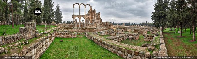 IF260705. Grand Palace ruins of Umayyad city of Anjar. Lebanon