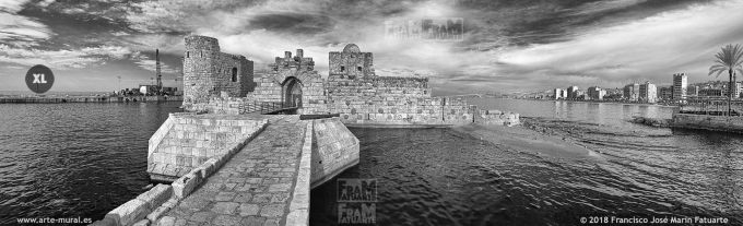 IS016316. Crusaders Sea Castle. Sidon, Lebanon