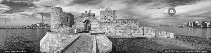IS016913. Crusaders Sea Castle. Sidon, Lebanon