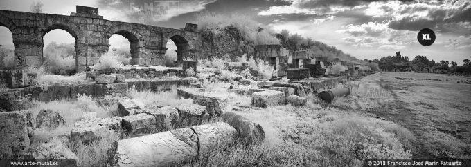 IS019493. Roman Hippodrome ruins. Tyre, Lebanon